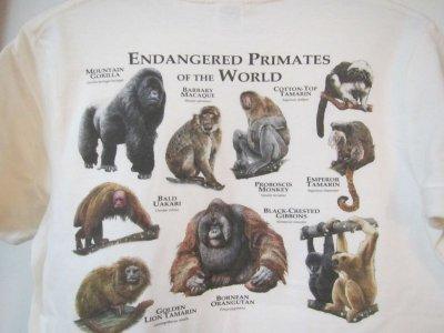 画像1: オリジナルTシャツ(Roger Hall オムニバス)各1枚での販売です その11