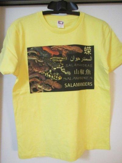 画像1: オリジナルTシャツ(Roger Hall オムニバス)各1枚での販売です その12