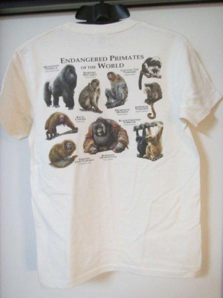 画像1: オリジナルTシャツ(Roger Hall オムニバス)各1枚での販売です その11 (1)
